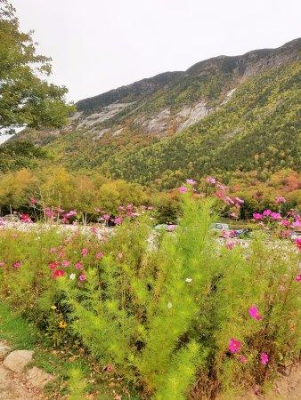 Hart's Location, Nueva Hampshire: Beautiful