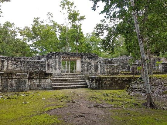 Calakmul Photo