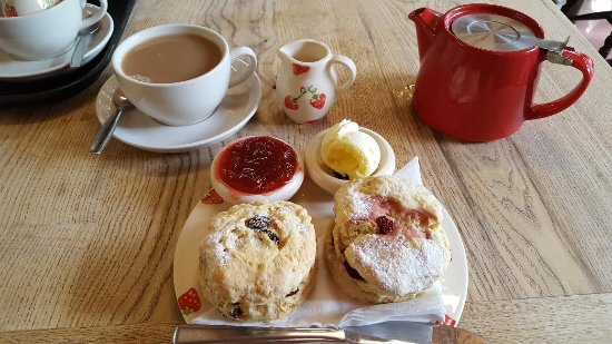 Brook, UK: Cream Tea - Delicious! (raisin scone & the other fruits of the forest)
