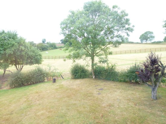 Yoxford, UK: View from the room