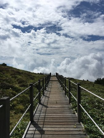 Hallasan National Park: Дорога