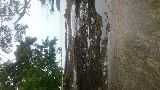 The Westin Playa Bonita Panama: DSC_0639_large.jpg