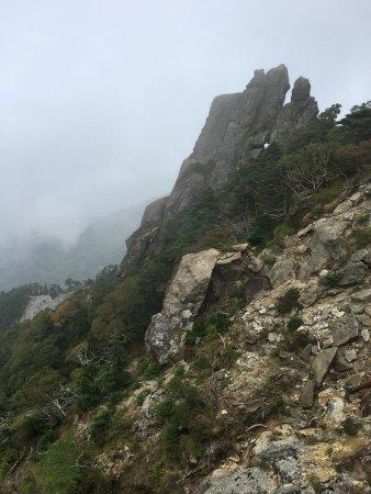 Hallasan National Park: Туман