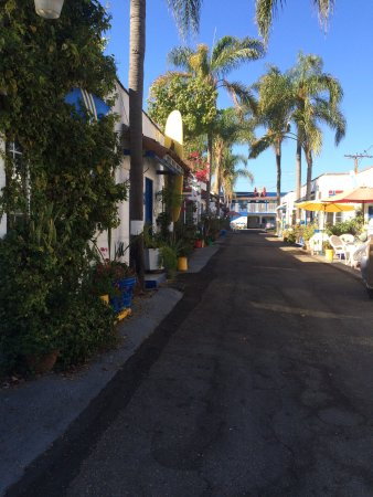 Palm Motel: photo0.jpg