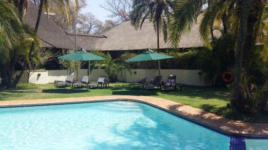 Kwa Maritane Bush Lodge: Main pool surrounds