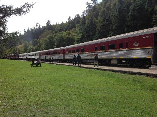 Agawa Train Tour Reviews
