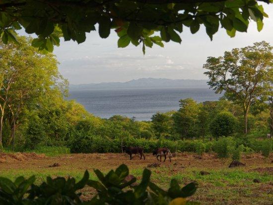 Finca Mystica: Blick von unserer Terrasse auf den See