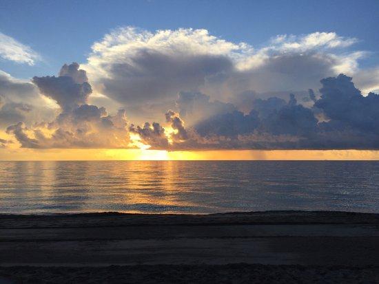 Sunny Isles Beach, FL: photo7.jpg