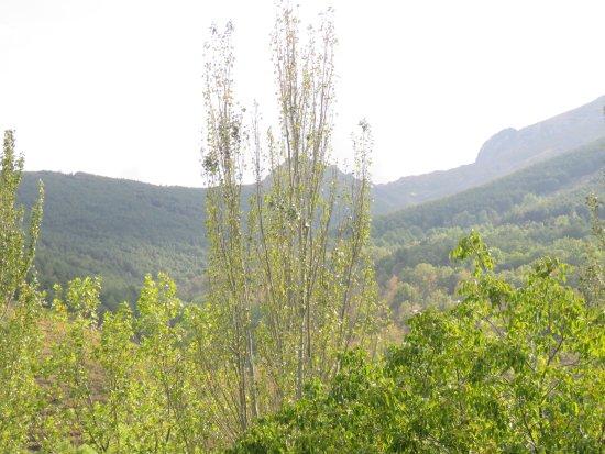 Valverde de los Arroyos, España: Binitas vistas desde la habitación de los montes circundantes