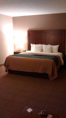 Comfort Inn Aikens Center: The king bed