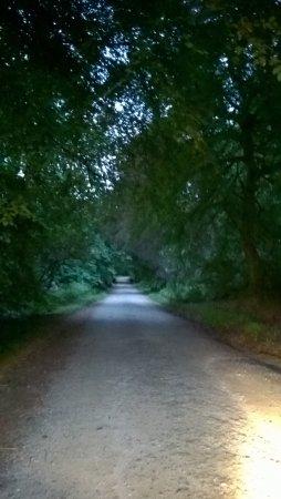 Carradale, UK: castle estate on summer night/my playground!