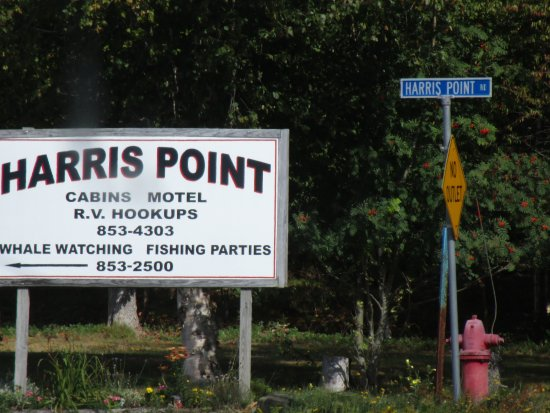Harris Point Shore Cabins: You have made it!