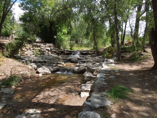 Santa Fe River Park: Water flows in the creek this time of year