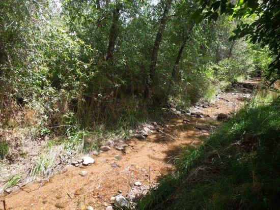 Santa Fe River Park: Inviting for a toe-dip or ...