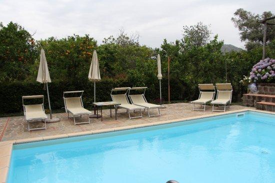 Villa Flavia: piscina