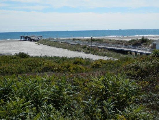 Gondolier Motel : ocean front