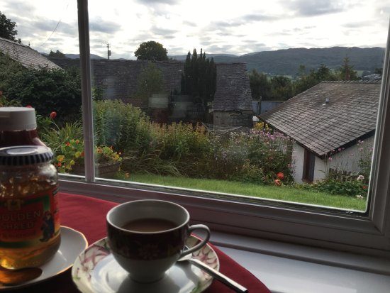Staylittle B&B : A pleasant view for breakfast with tea