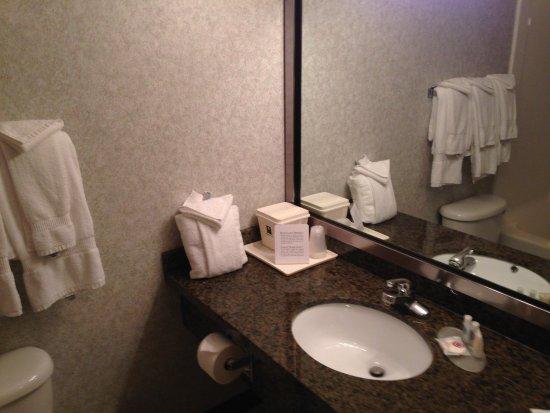 Comfort Inn & Suites Medicine Hat Photo