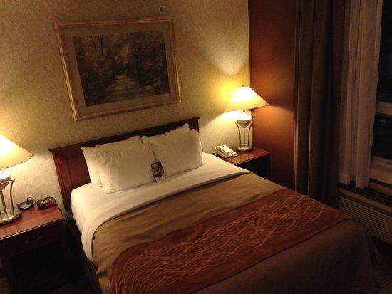 Comfort Inn & Suites Medicine Hat : Queen suite bedroom