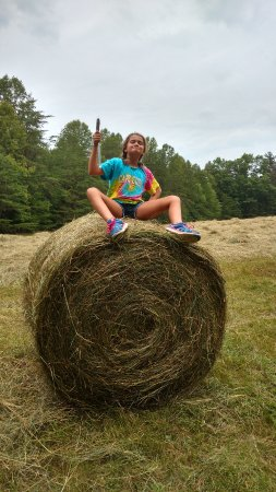 Ararat, VA: Fun on the farm - take a hayride - we make hay while the sun shines on Wolf Creek Farm!