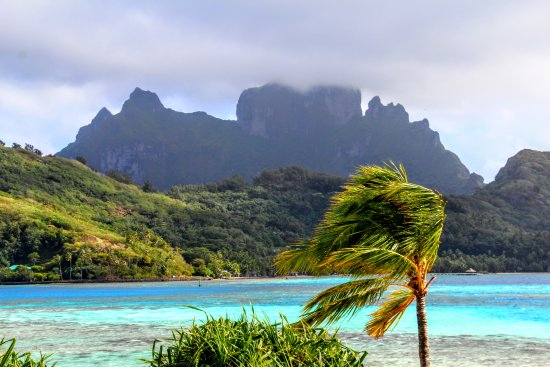 View From Restaurant Picture Of Sofitel Bora Bora Private