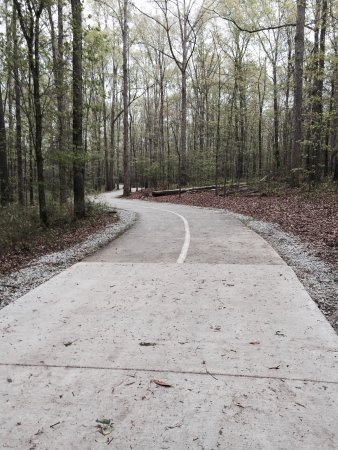 Loganville, Джорджия: Walking trail at Bay Creek.