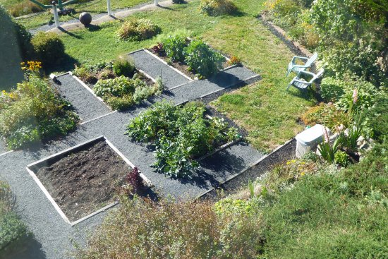 Bayside, Canadá: Nancy's raised garden beds getting ready for fall