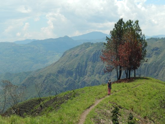 Cauca Department