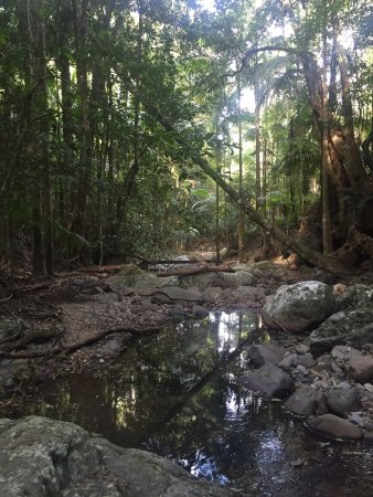 Upper Crystal Creek, Australien: Crystal Creek Rainforest Retreat