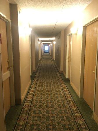 Comfort Inn & Suites: Hallway
