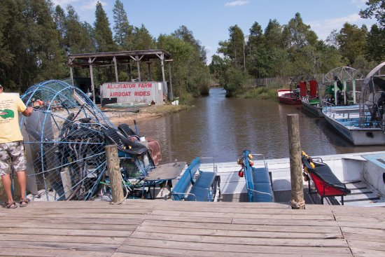 Gulf Coast Gator Ranch & Airboat Swamp Tours
