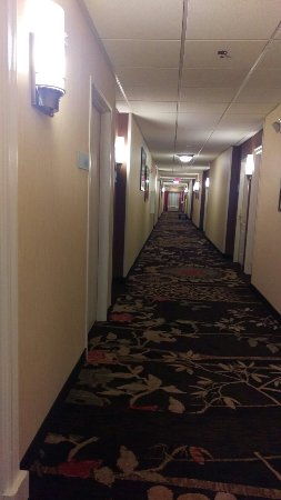 Holiday Inn Express Sharon/Hermitage: IMAG0158_large.jpg