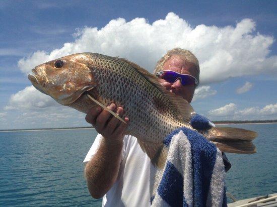 Melville Island, Australia: photo2.jpg