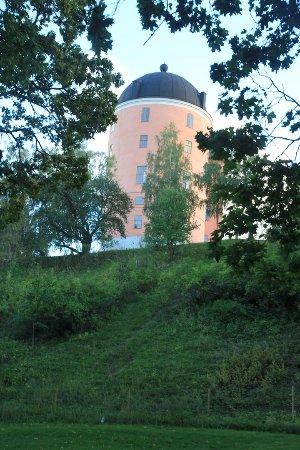 Уппсала, Швеция: castle