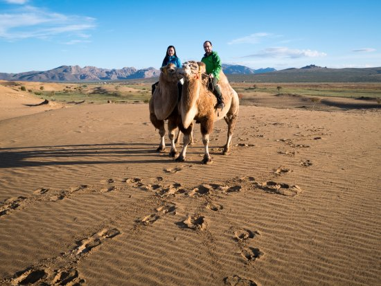 camel rides in elsen tasarkhai picture of nomadic discovery
