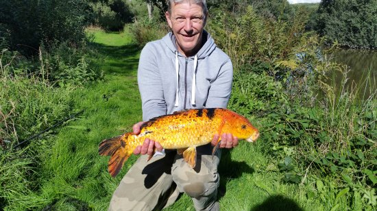 Pensagillas Coarse Fishing Lake
