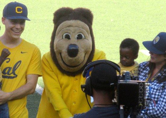oski cal mascot university of california berkeley ca foto de