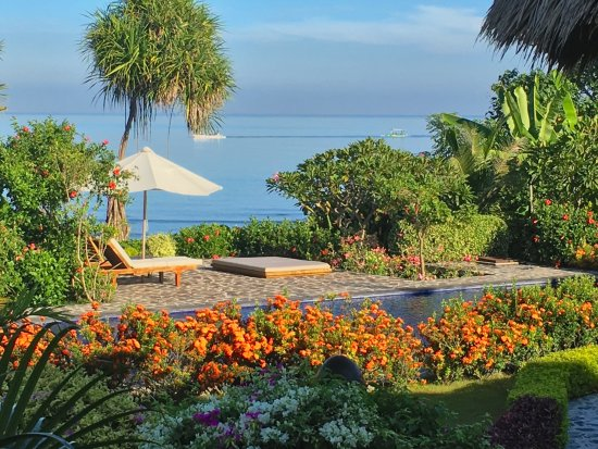 overlooking the pool, garden and sea, as seen from the ... on terrace lighting, herbaceous border designs, courtyard designs, terrace farming, terrace steps, terrace ideas for small spaces, terrace house design, best energy efficient home designs, terrace gardening, terrace landscape, wooden house designs, gazebo designs, patio designs, loggia designs, outdoor entertainment ideas and designs, terrace stone, pergola designs, terrace design in the philippines, brick wall planter box designs, product landscape designs,