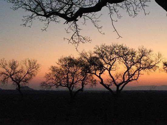 Ulusaba Safari Lodge: Sunset in the bush