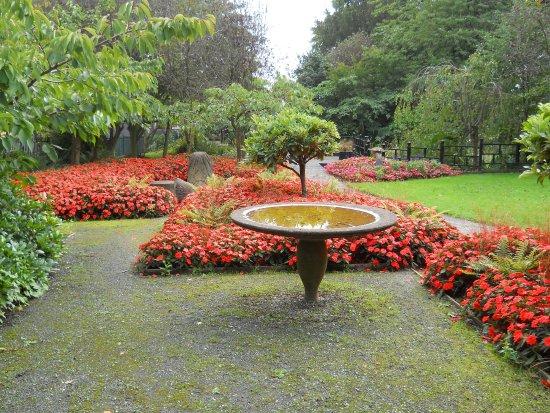 Telford Town Park: Maxell Garden late summer 2016