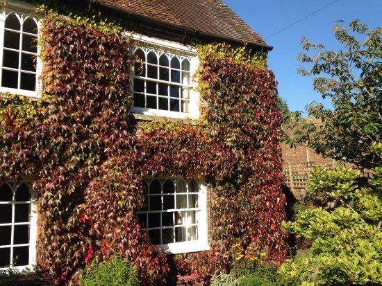 Kennet House: Autumn shades