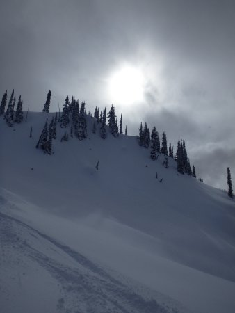 Eagle Pass Heliskiing: Amazing snow