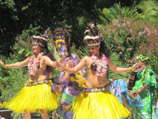 Saint-Cyr-en-Talmondais, Francia: Danseuses du Pacifique