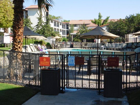 Embassy Suites by Hilton Hotel Palm Desert: The pool area