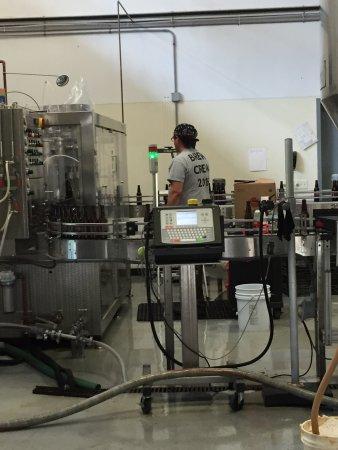 Atlantic Brewing Company: photo0.jpg