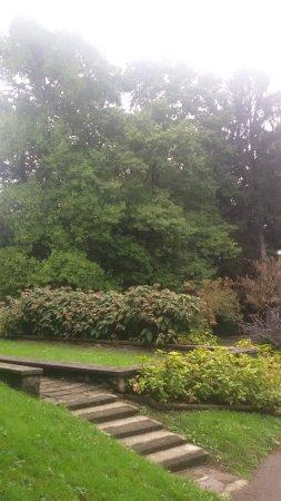 Parco Pagnacco Villa