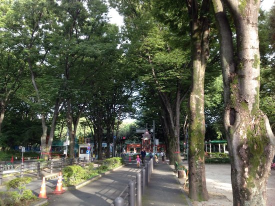 Suginami Jidokotsu Park