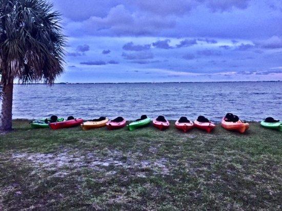A Day Away Kayak Tours : A Day Away Bio Tour