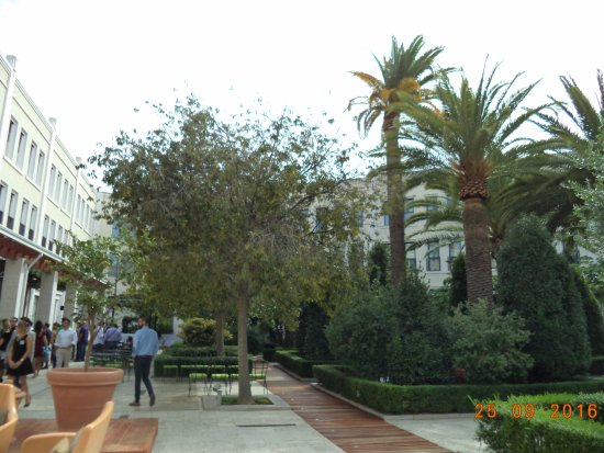 The Westin Valencia: Jardin intérieur