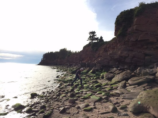 Murray River, Kanada: Under the cliff hunting for sea glass